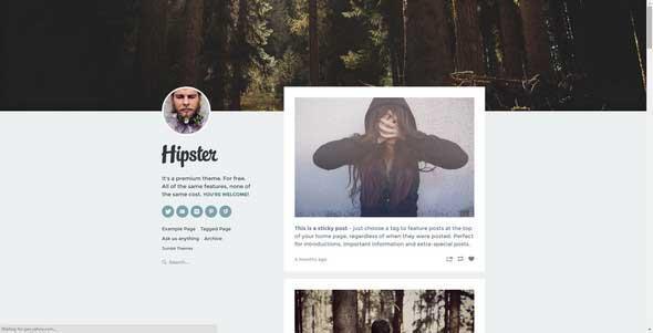 hipster_free_tumblr_theme