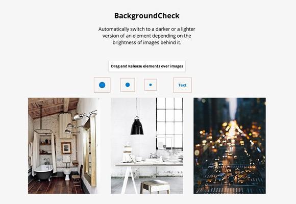 backgroundcheck_js