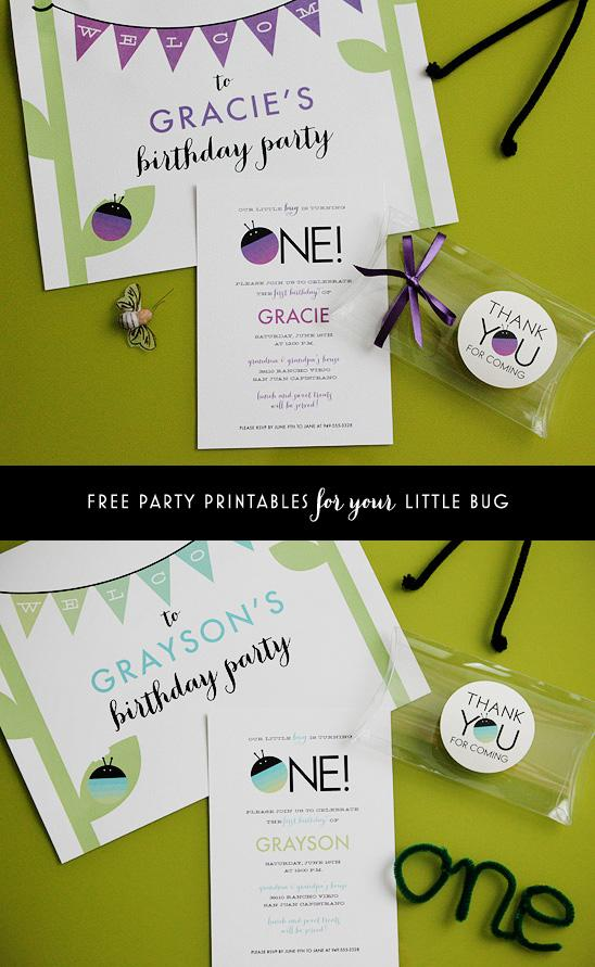 bug_themed_birthday_party_invitations_able_to_personalize_customize