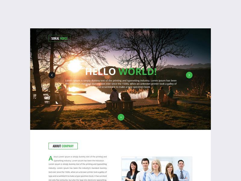 sokal_hoice_portfolio_template