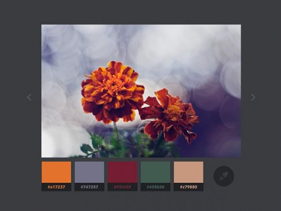color_extraction_effect_with_vibrant_js