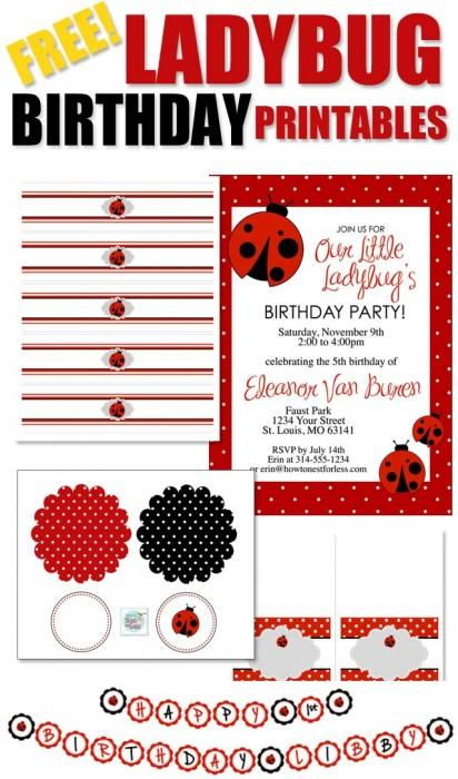 ladybug_birthday_party_invitations