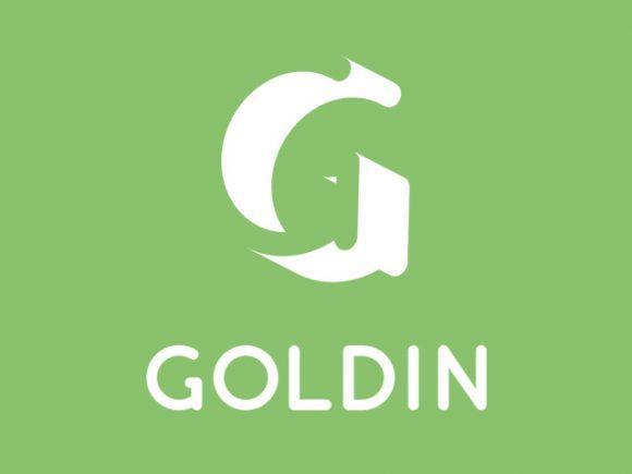 goldin_free_rounded_typeface