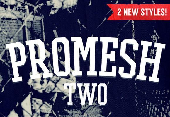 promesh_two_free_font