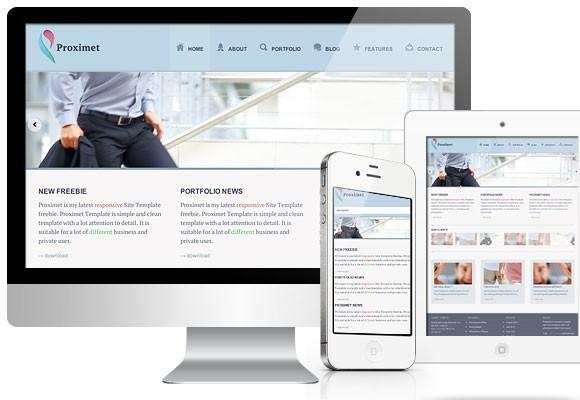 proximet_free_responsive_website_template