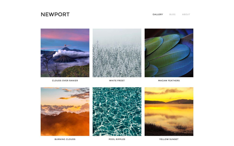 newport free webflow template