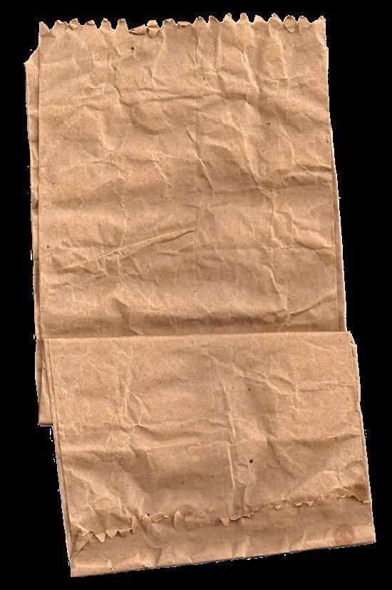 paper_bag_image