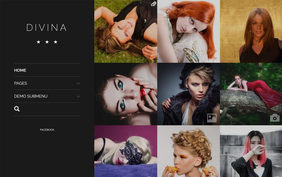 divina_responsive_wordpress_theme