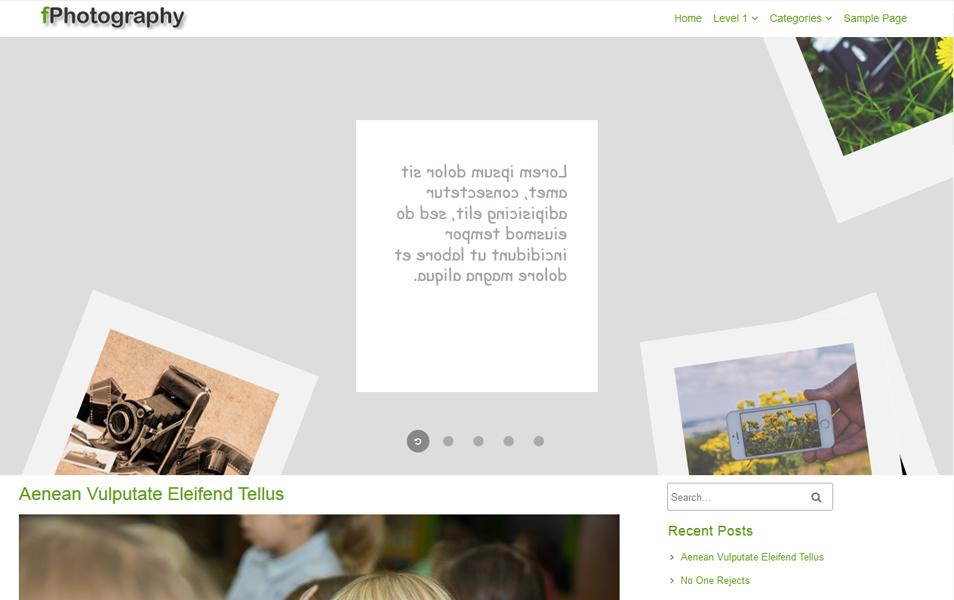 fphotography_responsive_wordpress_theme