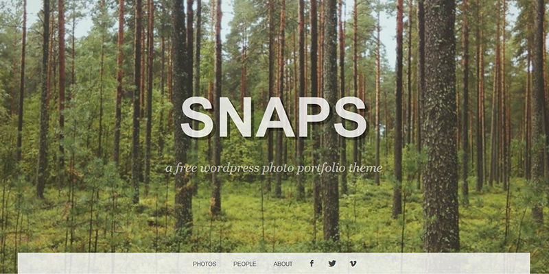 snaps_photographers_wordpress_theme