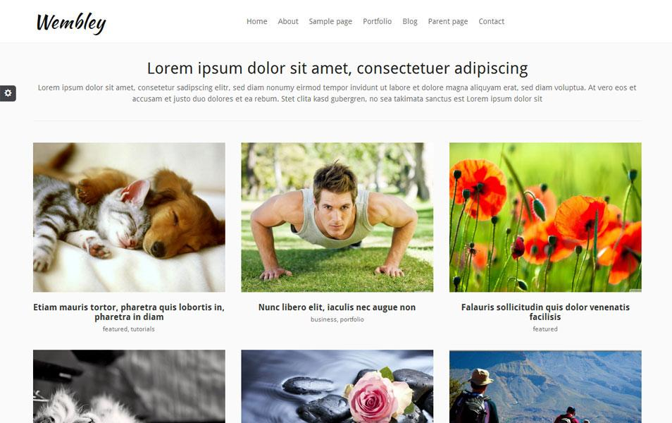 wembley_magazine_wordpress_theme