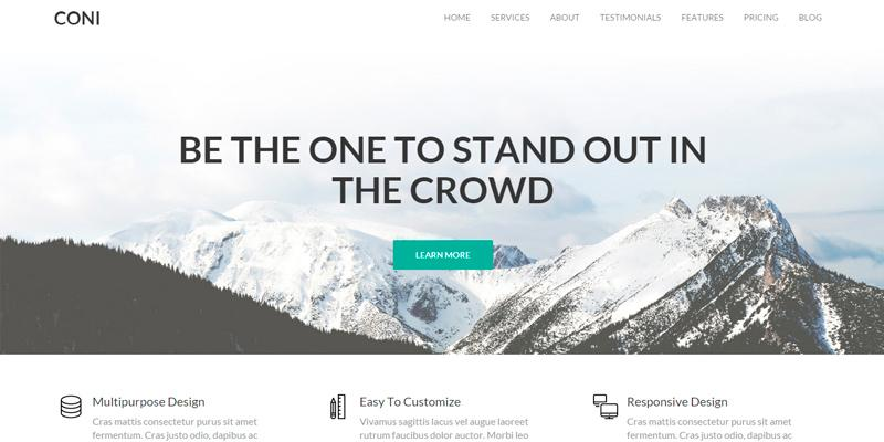 coni_corporate_multipurpose_wordpress_theme