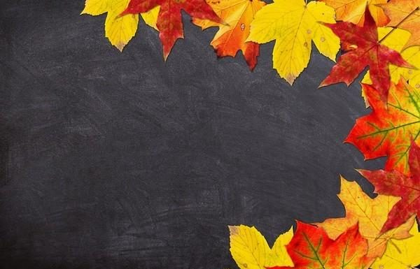 01-chalkboard-powerpoint-background