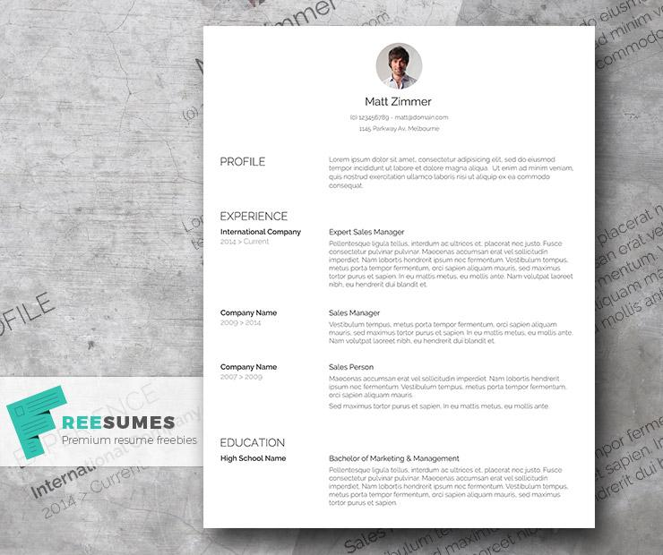 spick and span a clean resume template freebie