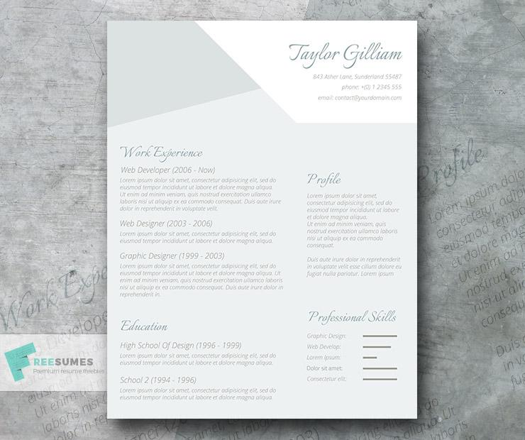 subtle resume freebie the intelligent applicant