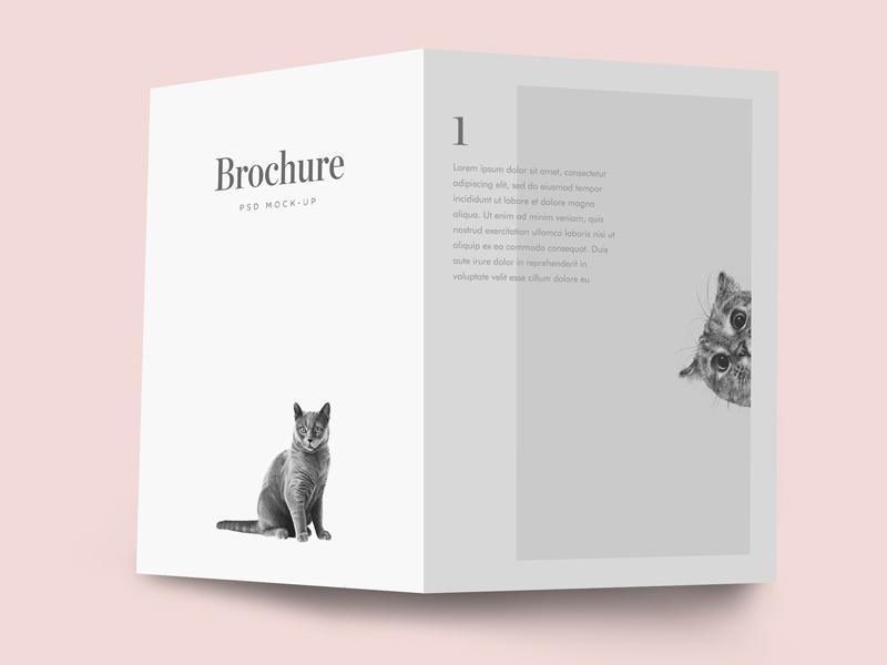 free_bifold_brochure_mockup