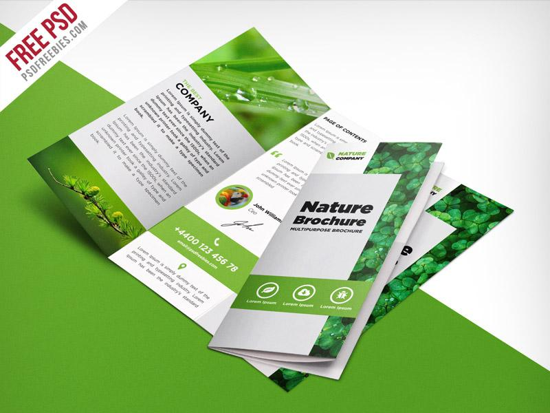 nature_tri_fold_brochure_template_free_psd