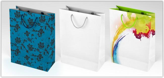 gift_bag_mock_up