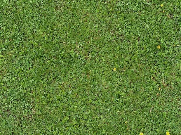 seamless_green_grass_texture