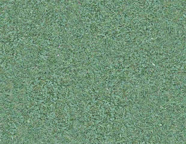 seamless_grass_texture_by_lauris