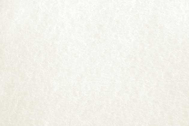 white_parchment_paper_texture