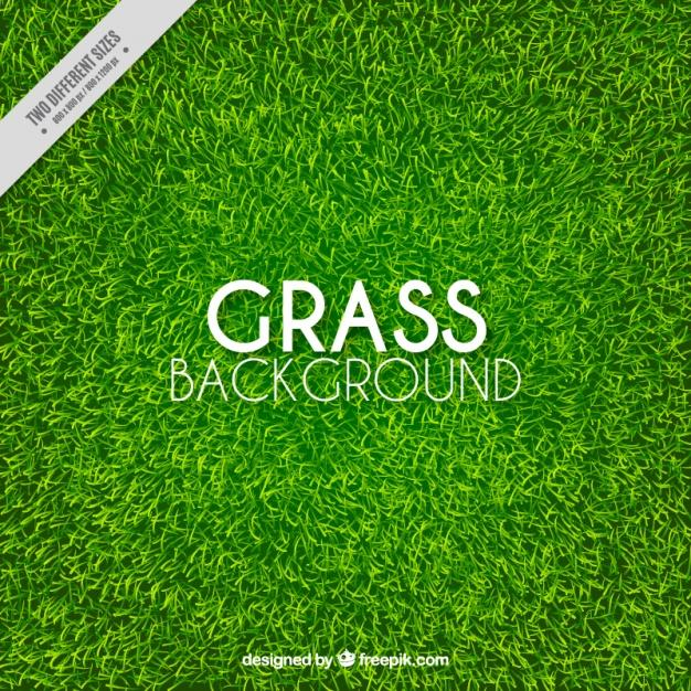 great_background_of_realistic_grass