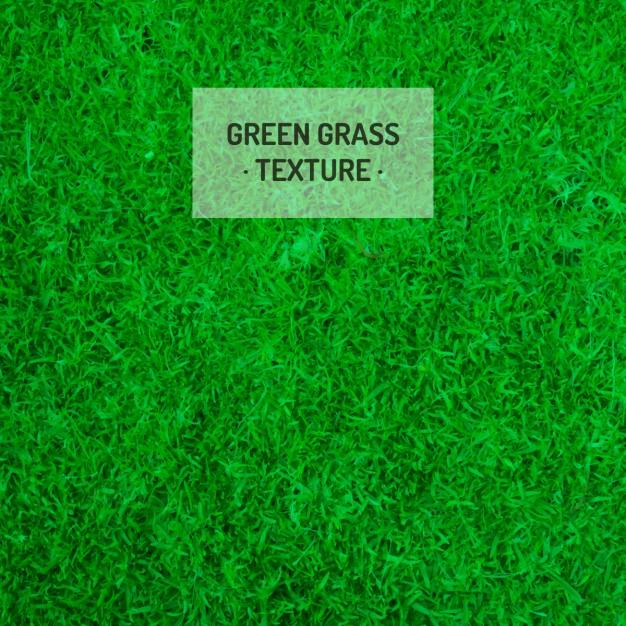 green_grass_texture_free_vector