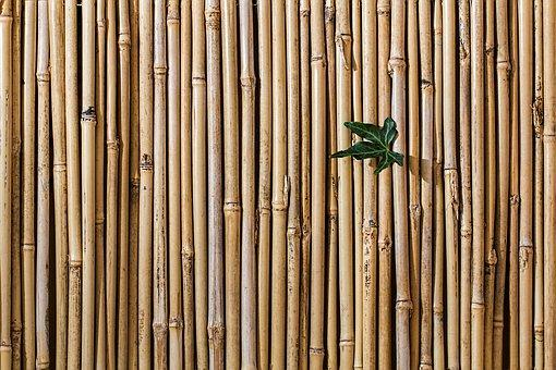 bamboo_barrier_screen_fence