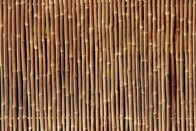 bamboo_fence_texture