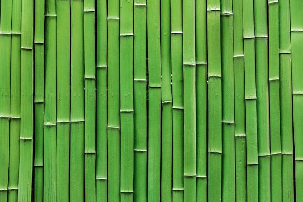 bamboo_raft