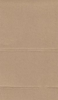 paper_texture_brown_raw_light