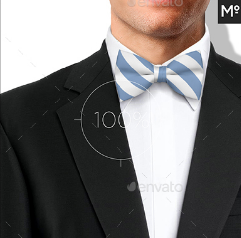 bow_tie_mock_up